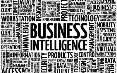 Data Supply Chain Models for Business Intelligence